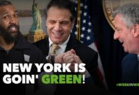 This Week in Weed: New York Goes Green!