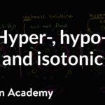 Hypotonic, isotonic, and hypertonic solutions (tonicity) | Khan Academy
