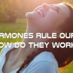 Do Hormones Rule Our Life? How Do They Work? - Hormones and their Functions Explained