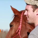 Therapy Horses That Help Veterans To Live A Better Life!
