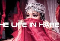 The Life in Harem Documentary