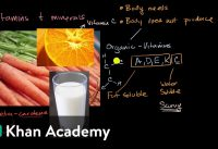 Introduction to vitamins and minerals   Biology foundations   High school biology   Khan Academy