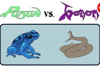 Poison vs. venom: What's the difference? - Rose Eveleth