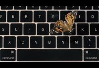 Apple's Faulty MacBook Butterfly Keyboard Explained... With Real Butterflies