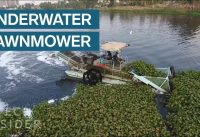 Underwater Lawnmowers Are Cleaning Trash Out Of Rivers