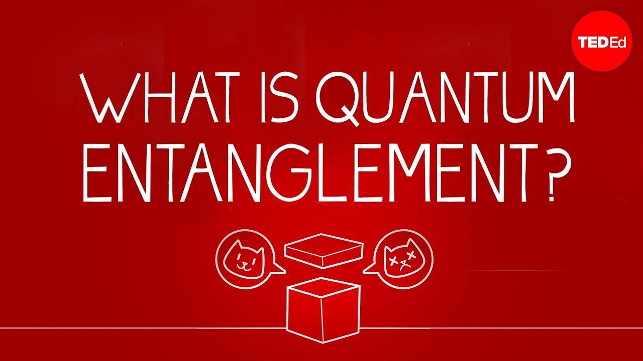 What can Schrödinger's cat teach us about quantum mechanics? - Josh Samani