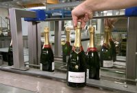 Pop the Bubbly! How Champagne is Made!