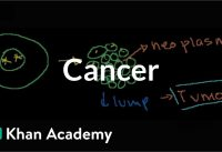 Cancer | Cells | MCAT | Khan Academy