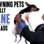 The Bizarre Unspoken Truth About Pet Ownership - Honest Ads