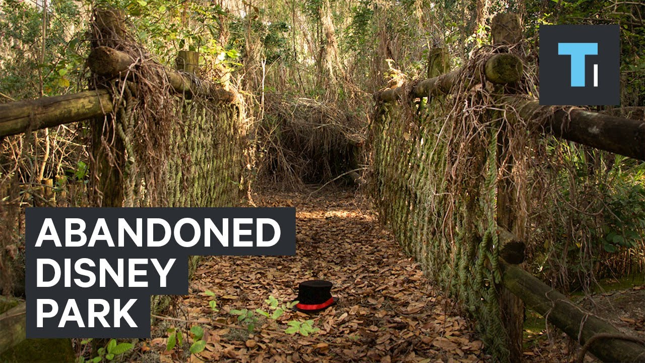 Abandoned Disney Water Park Has Been Rotting For Over 15 Years