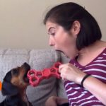 The Woman Who Made Her Home Into a Dog Sanctuary | A Rescue Dog's Journey (Part 5)