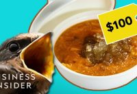 Why Bird's Nest Soup Is So Expensive | So Expensive