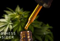 Why Full-Spectrum CBD Oil is So Expensive | So Expensive